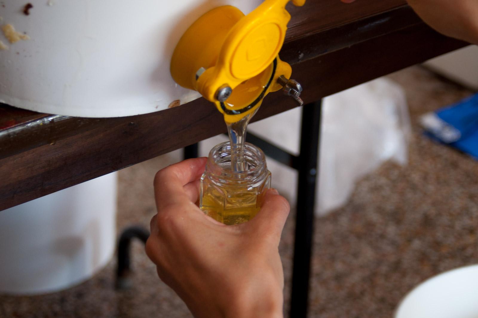 extraction de miel, conditions sanitaires, meilleures pratiques, comment extraire le miel, empotage du miel, services aux membres de Miel Montréal