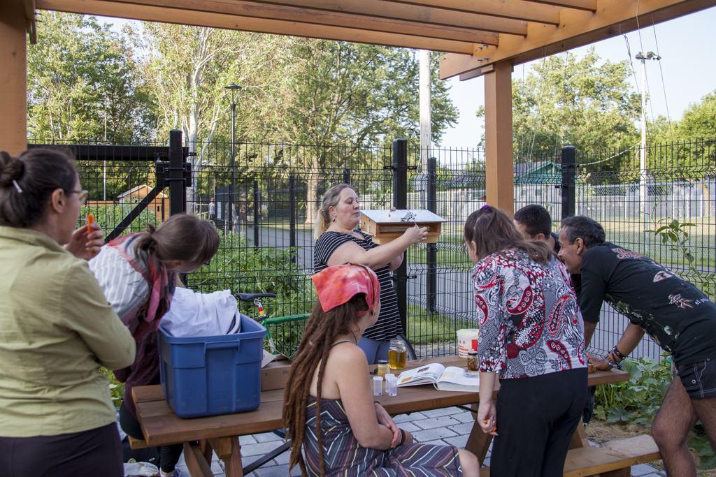 Ateliers et cours, enfants, scolaire, Montréal, Québec, Laval, événements, activités enfants, apiculture urbaine, calendrier