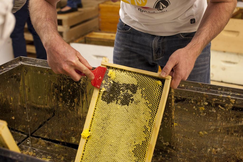 Groupe d'achats, journée d'extraction, prêt de matériel apicole,  tarif préférentiel