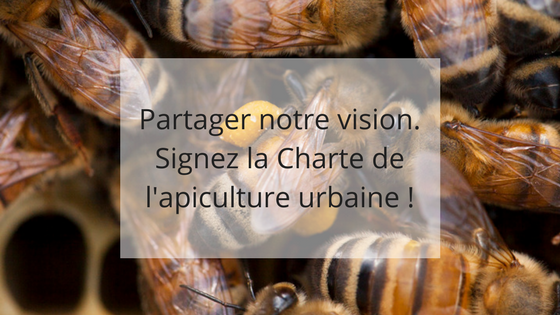 partager valeurs, charte apiculture urbaine, apiculture responsable