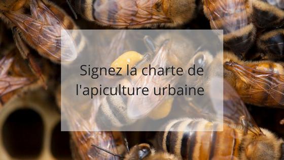 Signez charte apiculture urbaine, apiculture responsable, aider les abeilles, bonnes pratiques apicoles