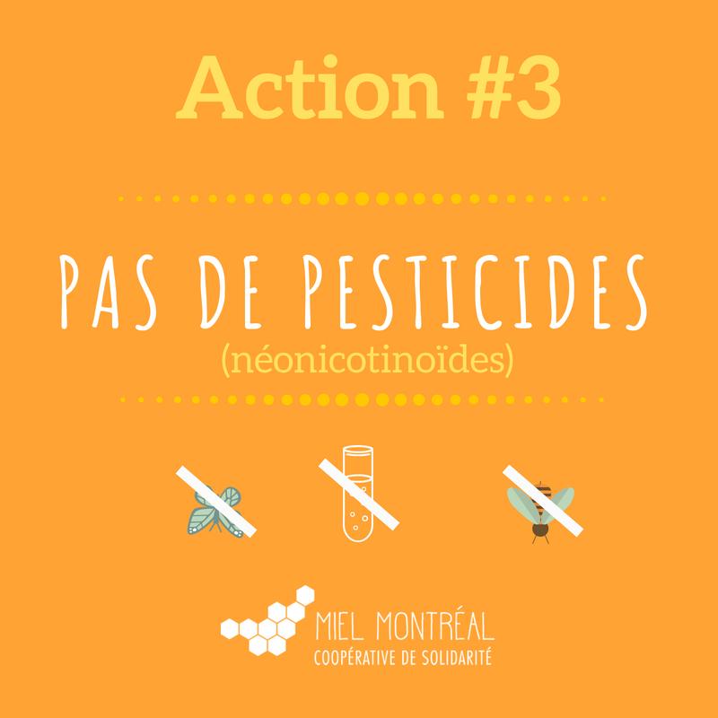 pesticides abeilles, AIPS, tuer les abeilles, protéger les abeilles, abeilles en ville, pesticides en ville