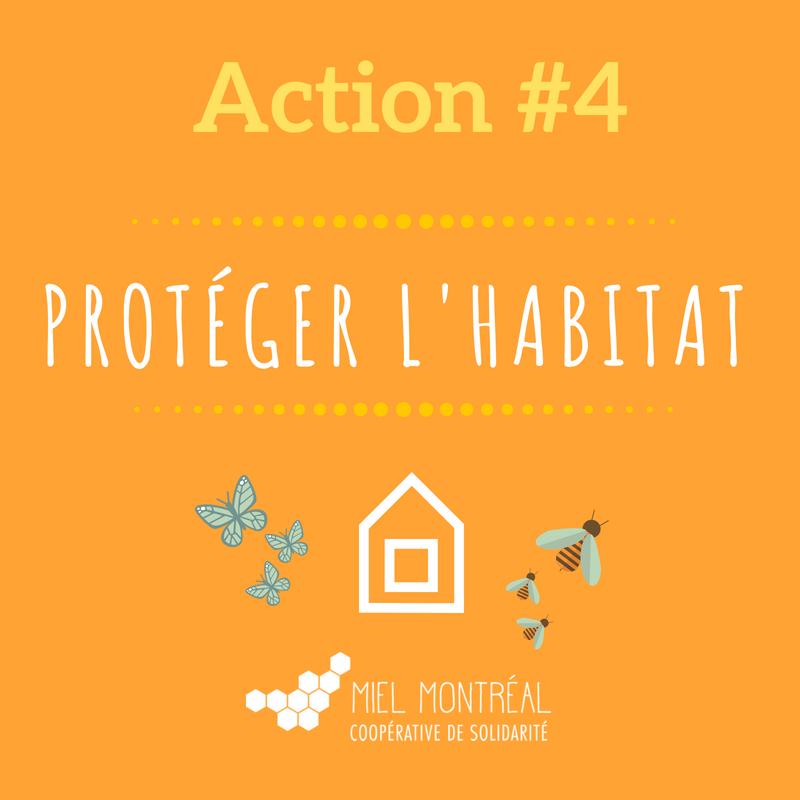 Protection habitat abeilles, habitat pollinisateurs naturels, hôtel à insectes, habitat abeilles en ville, lutter contre la disparition des abeilles, apiculture urbaine