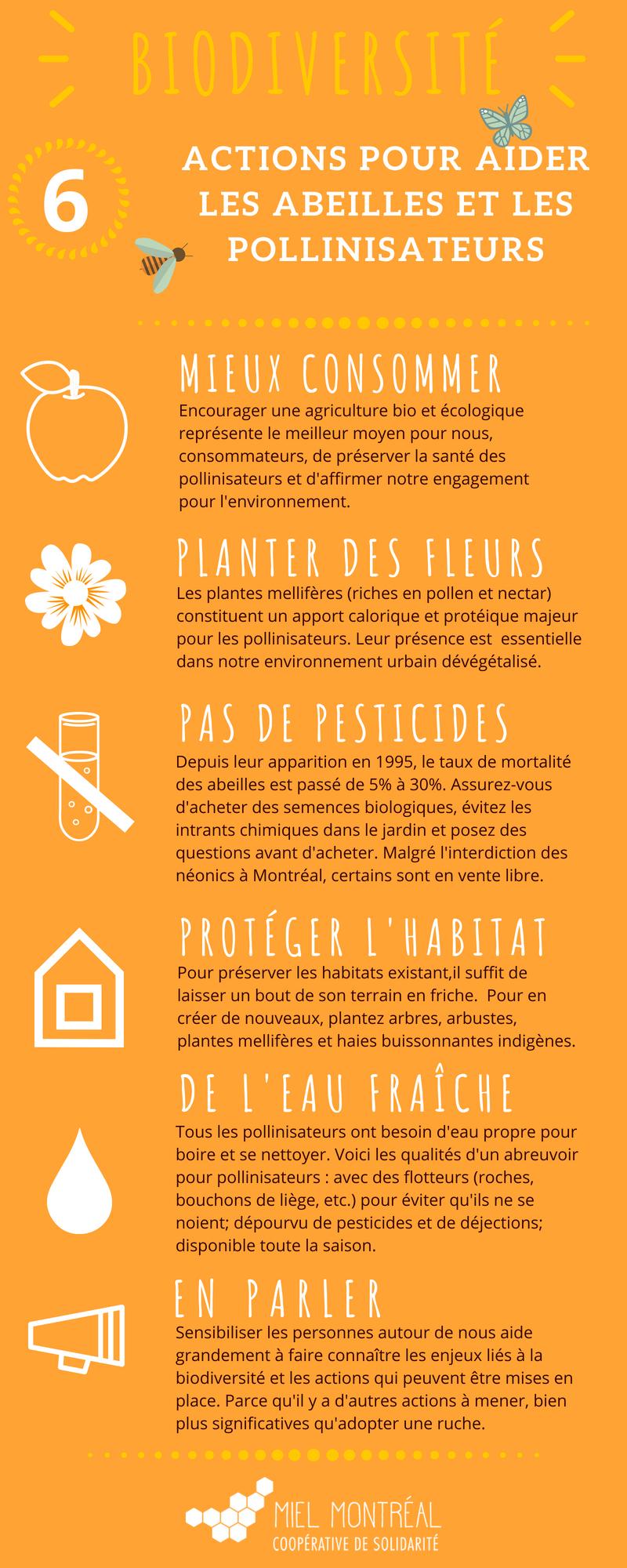 gestes pour aider les abeilles, 6 actions pour la biodiversité, comment lutter contre la disparition des abeilles, apiculture urbaine, biodiversité en ville