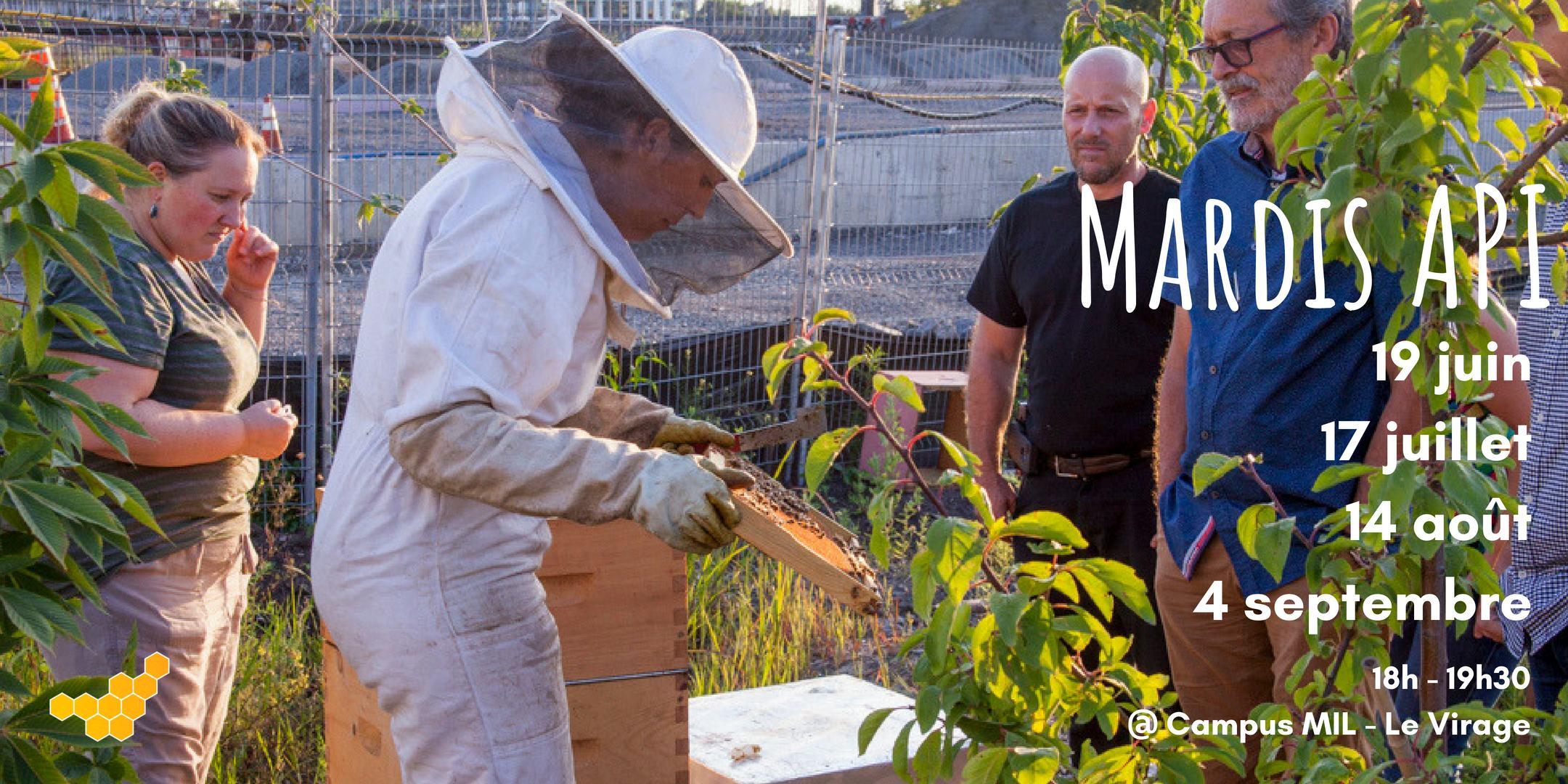 Ateliers, apiculture, découvrir les abeilles, les ruches, mardis Api, calendrier événements, formation