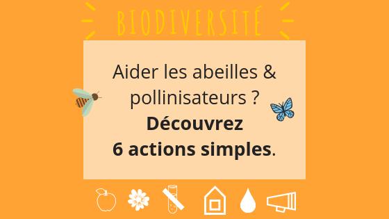 Sauvons les abeilles, gestes simples pour aider les abeilles, extinction abeilles, abeilles solutions, apiculture urbaine responsable