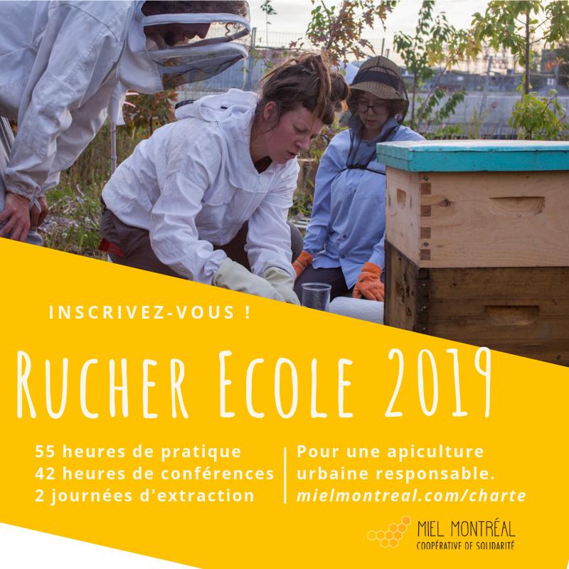 Rucher École de Miel Montréal, Formation pratique en apiculture, apprendre gestion du rucher sur site, entretien matériel apicole, maladies abeilles, récolte miel, extraction, collectif, apiculture responsable