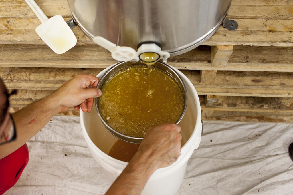 Achat de Miel Urbain, Miel Coop Miel Montréal, Où acheter du miel urbain, les biens faits du miel